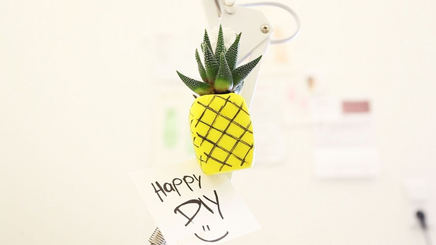Ananas Magnet